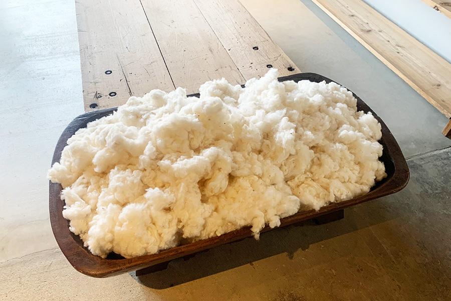 店内の一角には、綿の展示もされている。森田さん夫妻が育てる綿で、布団も制作中。4月9日・10日は綿製品のブランド「mani e cotone」の展示も