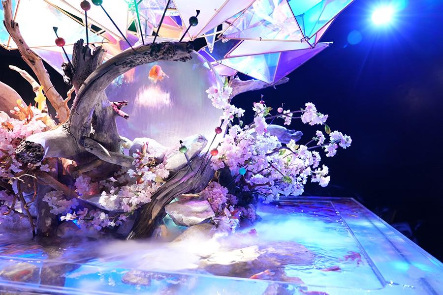 リニューアルオープンした「金魚ミュージアム」(奈良市二条大路南)