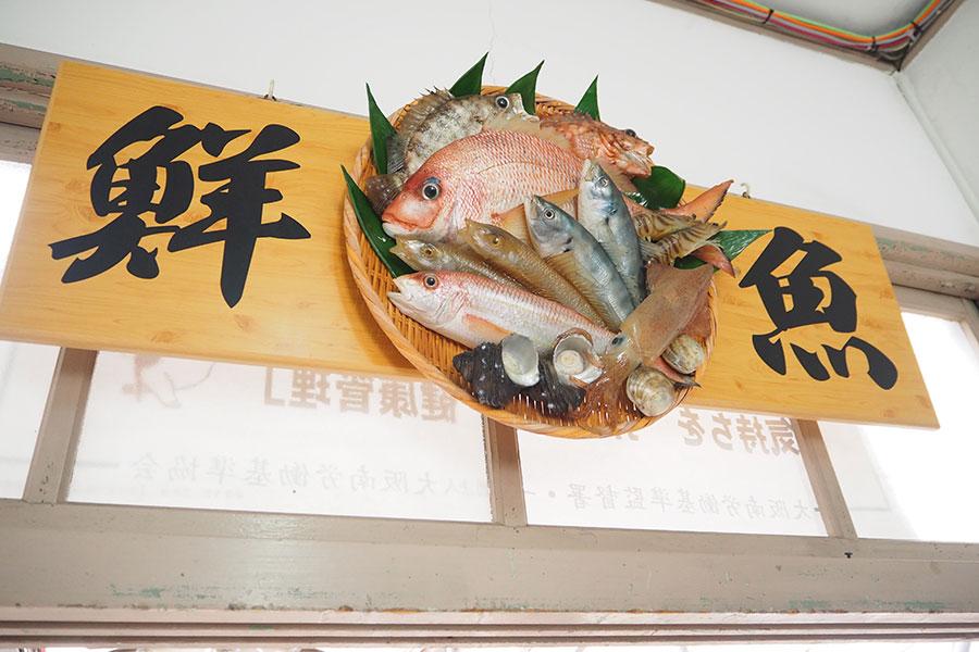 工場への通路に飾られた、リアルな「鮮魚」サンプル