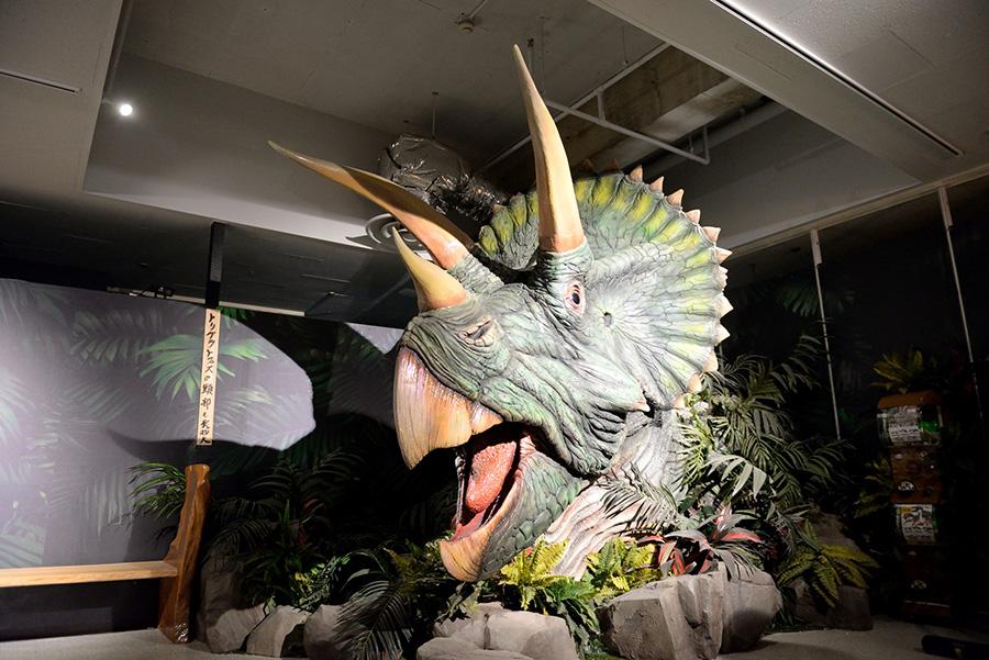 館長の親友であるクリス・ウェイラス氏から贈られた実物大の恐竜の頭が圧巻の「友情の森」