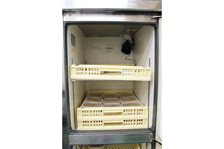冷蔵庫に手を加え、こたつのような保温機能を持たせたオリジナルの発酵庫。48時間じっくり発酵させる