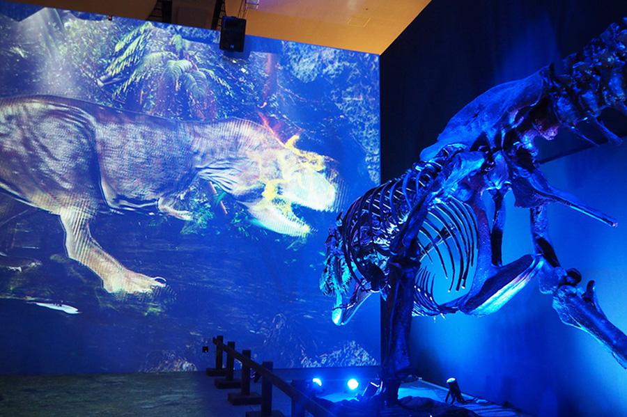 大きなスクリーンにはリアルサイズのティラノサウルスが