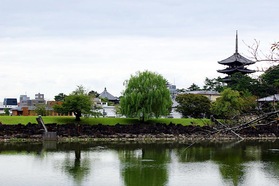 世界遺産である興福寺の五重塔と春日山原始林を臨み、奈良公園南端に位置する荒池のほとりに建つ。「奈良はおおらかなところ。自然が近くにあり、お寺は大きく開放的で密になりにくいので(コロナ禍の)今の世には魅力的だと思います。ゆっくり泊まって頂き、あるいは、地元の方はご友人や親戚の方とカフェやテラスをご利用頂いて、奈良の魅力を再発見して頂けたら」と上野さん