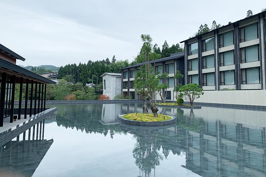 エントランスを抜けると、京都に自生する植物を配した中庭が広がり、自然の景観が映り込む水盤も美しい