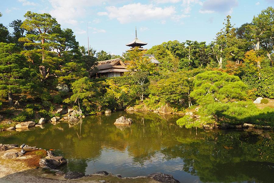 重要文化財・五重塔など絶景が広がる、国名勝「仁和寺御所庭園」北庭